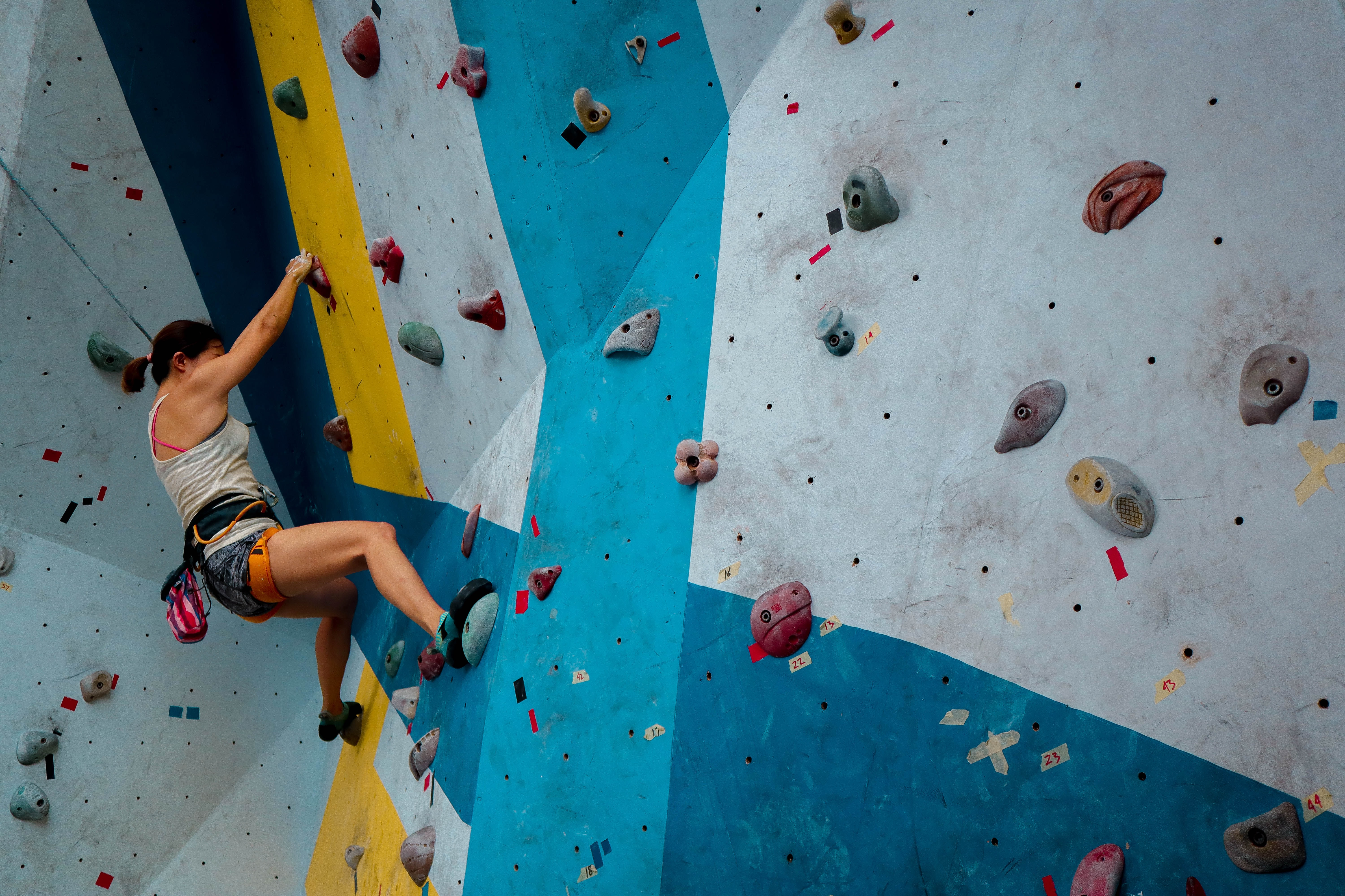 the climbing gym market