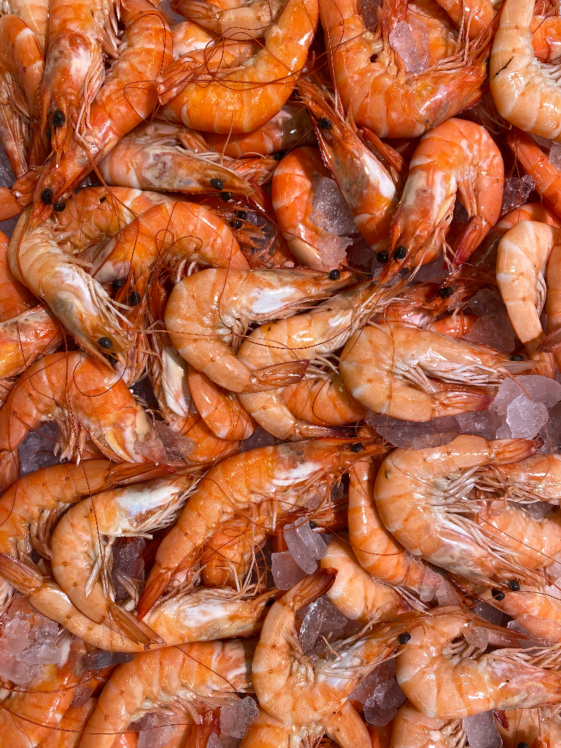 the shrimp market