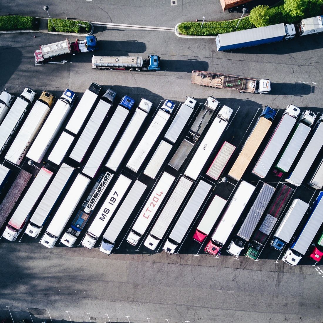 the truck market